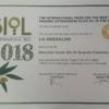 olio d'oliva premiato Biol gold medal